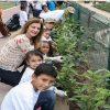 Impulsa DIF Tampico Conciencia Ambiental para Proteger Especies Polinizadoras