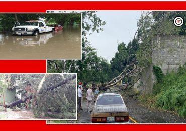 Daños Materiales y Afectaciones en 10 Colonias Deja Tormenta Eléctrica y Lluvias del Frente Frío 6 en Tampico