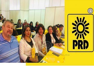 Unido y más fuerte que nunca el PRD en el País: Sosa Pohl