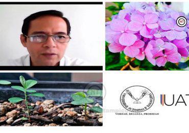 Recomiendan expertos ayudar a la naturaleza durante el confinamiento