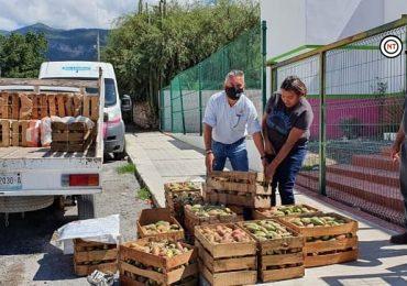 DIF Tamaulipas ayuda a familias de Miquihuana a vender Tunas
