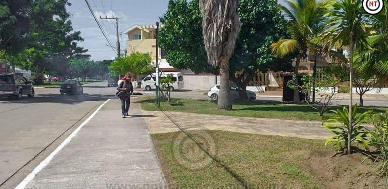 Gobierno de Madero mantiene programa de fumigación en espacios públicos
