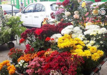 Temen floristas no vender; pandemia cerró panteones